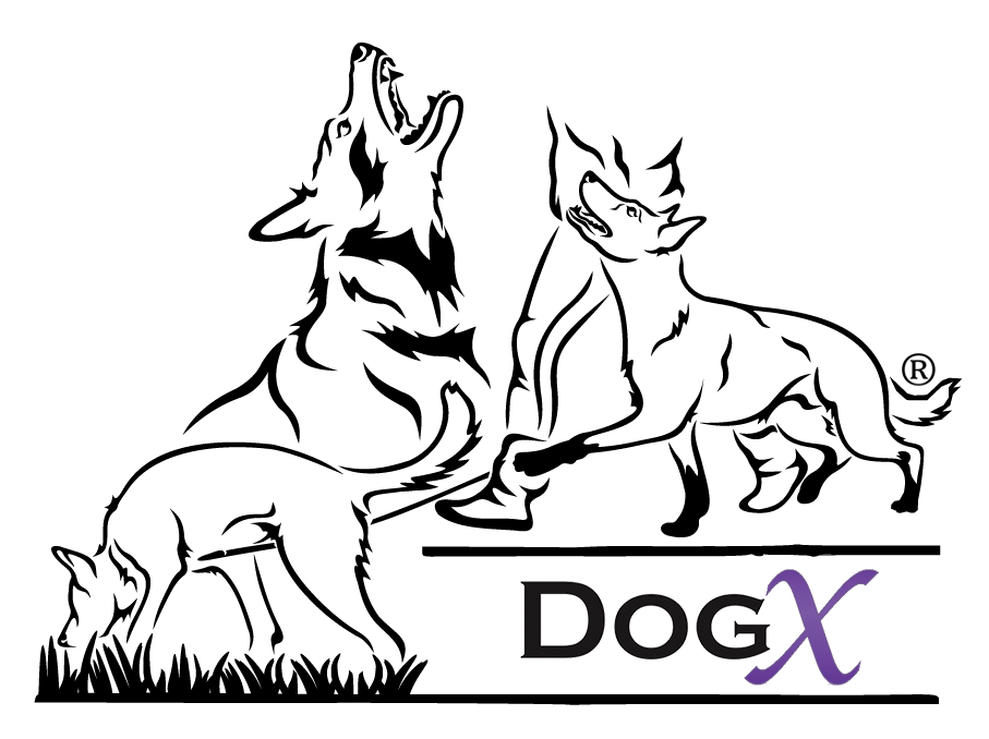 DogX | Dog Shop | Dog Sport | Canadoo